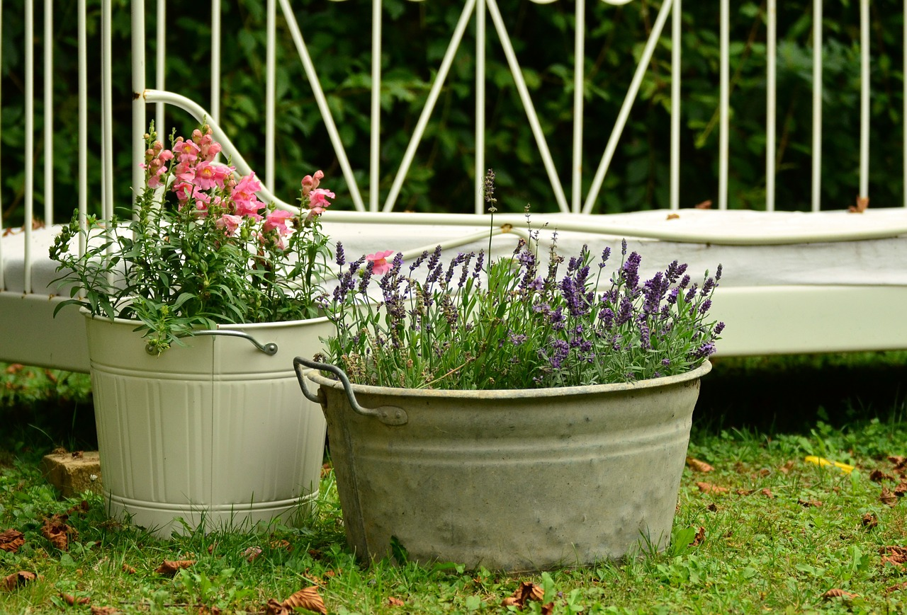 winter container gardening tech style direct